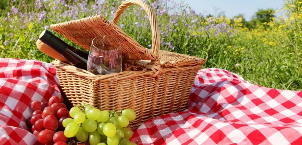 picknicken--natuur-mooi weer