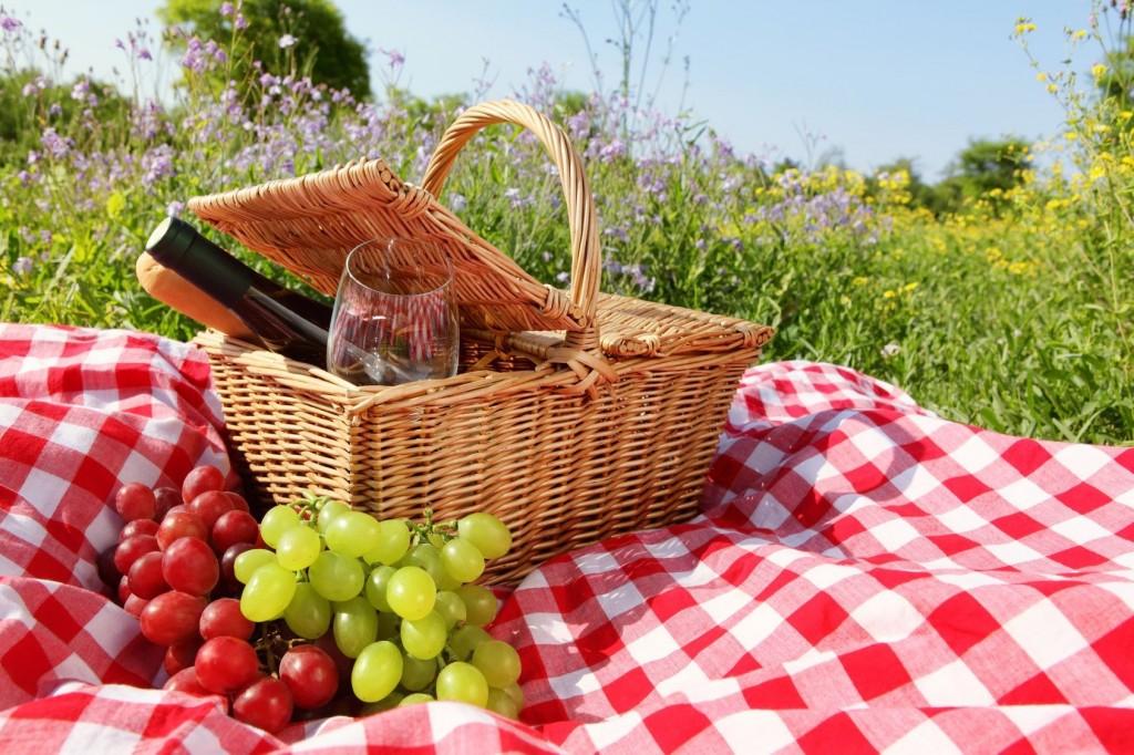 Picknicken - Le Ciel et La Roche