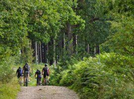 Fietsen-bossen-omgeving-vakantiehuis-Ardennen